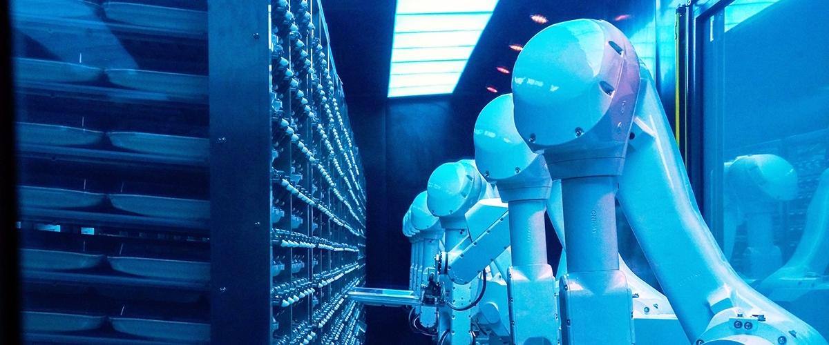ООН назвала лидеров и самую популярную область ИИ