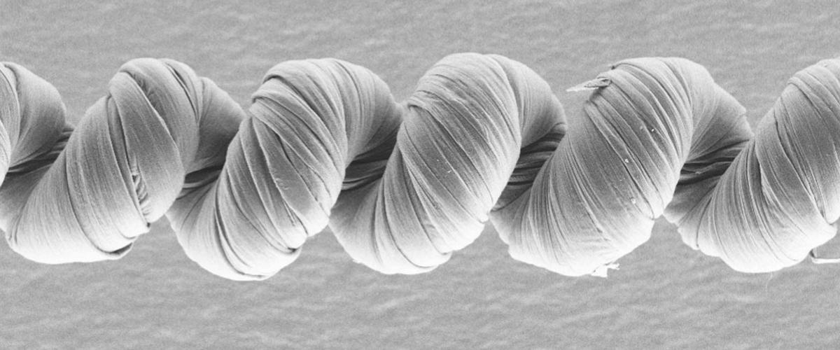 Сила мускул из углеродных нанотрубок в 29 раз превосходит человеческую