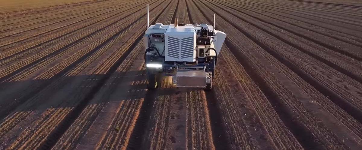 Робот-фермер уничтожает 100 000 сорняков в час лазерами
